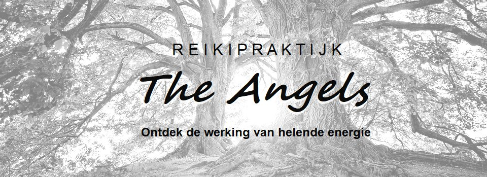 Reikipraktijk the Angels